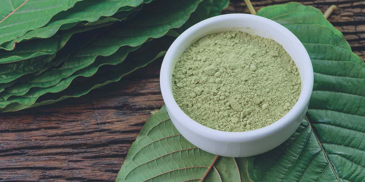 A bowl of kratom powder sitting on top of kratom leaves