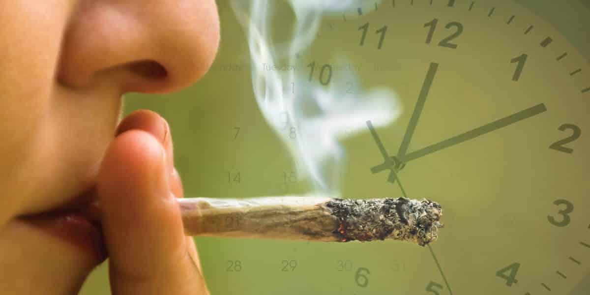 Person smoking a marijuana blunt